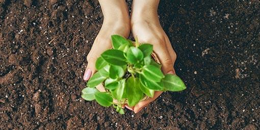 Prativita - Environmental Responsibility